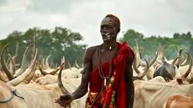 Lovløshet og kvegtyverier forlenger krisen i Sør-Sudan