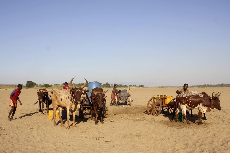 TØRKE: Menn graver etter vann i den uttørkede Mandrare-elven på Madagascar. Landet har opplevd tre år på rad med tørke, og 1,5 millioner mennesker har nå akutt behov for nødhjelp, ifølge FNs matvareprogram.