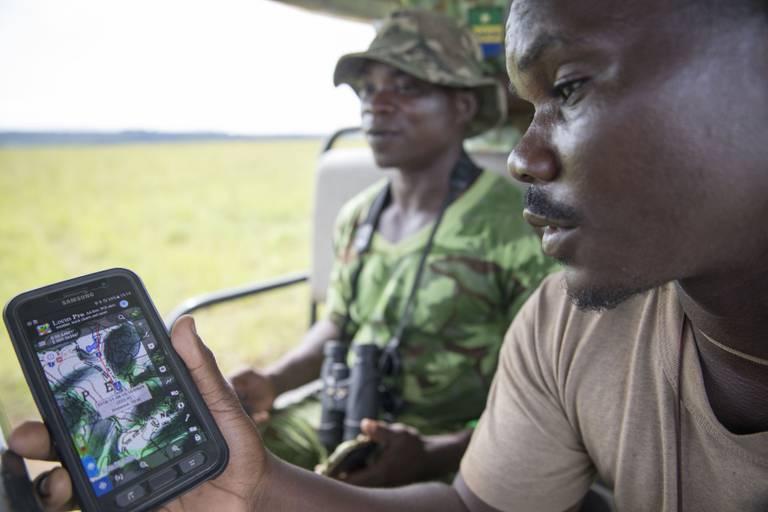 Teamet av EcoGuards følger med på GPS hvor skogelefantene i Gabons regnskoger beveger seg, for å hindre at de blir skutt og drept av jegere som er ute etter elfenben. Gabon har en stor andel av de skogelefantene som fortsatt finnes i verden. De er også viktige for å ta vare på regnskogen, som igjen er viktig for livsviktig regn i andre deler av Afrika. EcoGuards støttes av det norske klima- og skoginitiativet, NICFI. Norad.