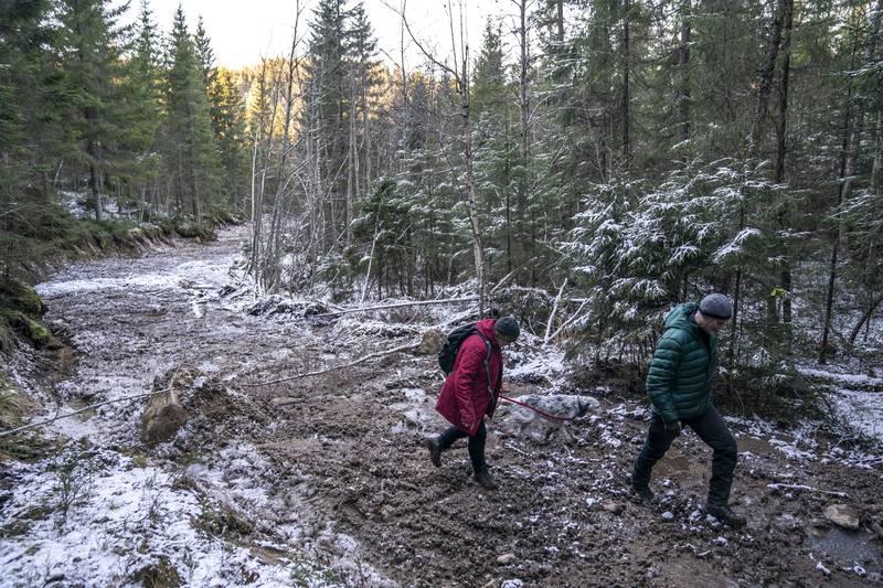 ETTER HOGSTEN: Helga Gunnarsdóttir og Bjørnar Thøgersen i Østmarkas Venner tråkker innover på den delvis frosne traseen inn mot hogstfeltet.