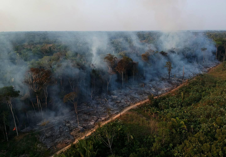 NYE BRANNER: Tørkesesongen er i gang, og det brenner igjen i Amazonas. Komunen Lábrea har allerede registrert mer enn 3600 branner i 2021. Dette bildet er tatt i området 12. august i år.