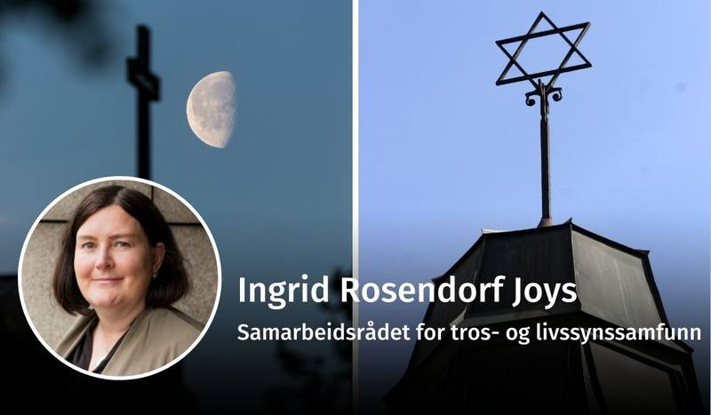 Ingrid Rosendorf Joys, DNK-DMT, debatt