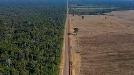 Legger press på Brasil for å stanse avskoging