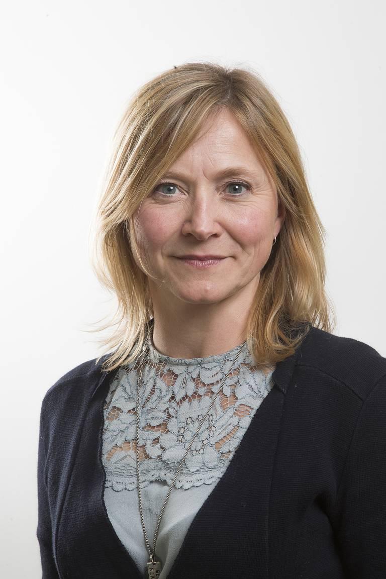Siren Eriksen, Professor i sykepleie, Lovisenberg diakonale høgskole