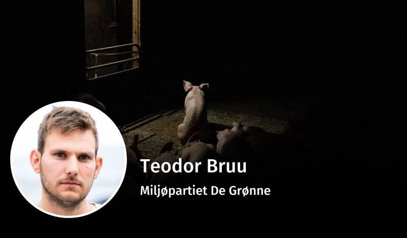 Teodor Bruu, dyrevelferd, debatt