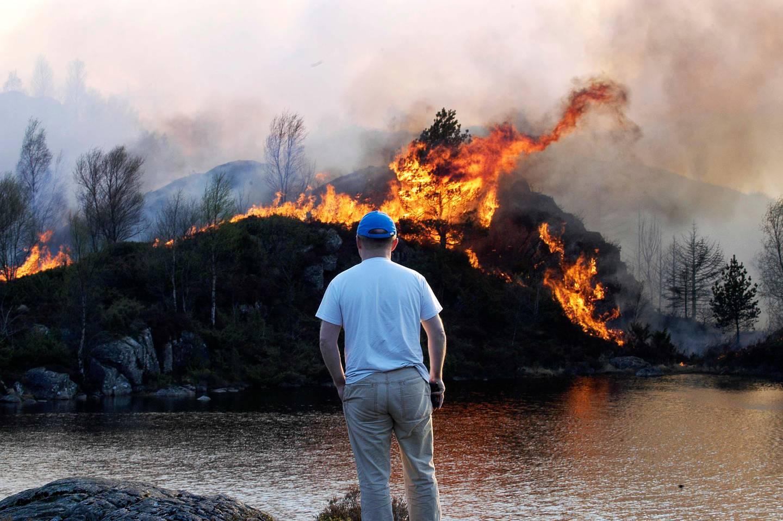 MORLAND, SOTRA, 20060505: En stor skog- og lyngbrann kom ut av kontroll på Morland på Sotra utenfor Bergen fredag kveld. Et titall husstander ble evakuert som følge av brannen. Foto: Marit Hommedal / SCANPIX