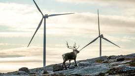 Samisk miljøleder: Først rammes vi av klimaendringene, så av det grønne skiftet