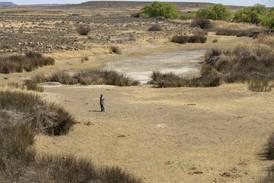 WHO ber om ambisiøse klimamål for å unngå helsekatastrofe