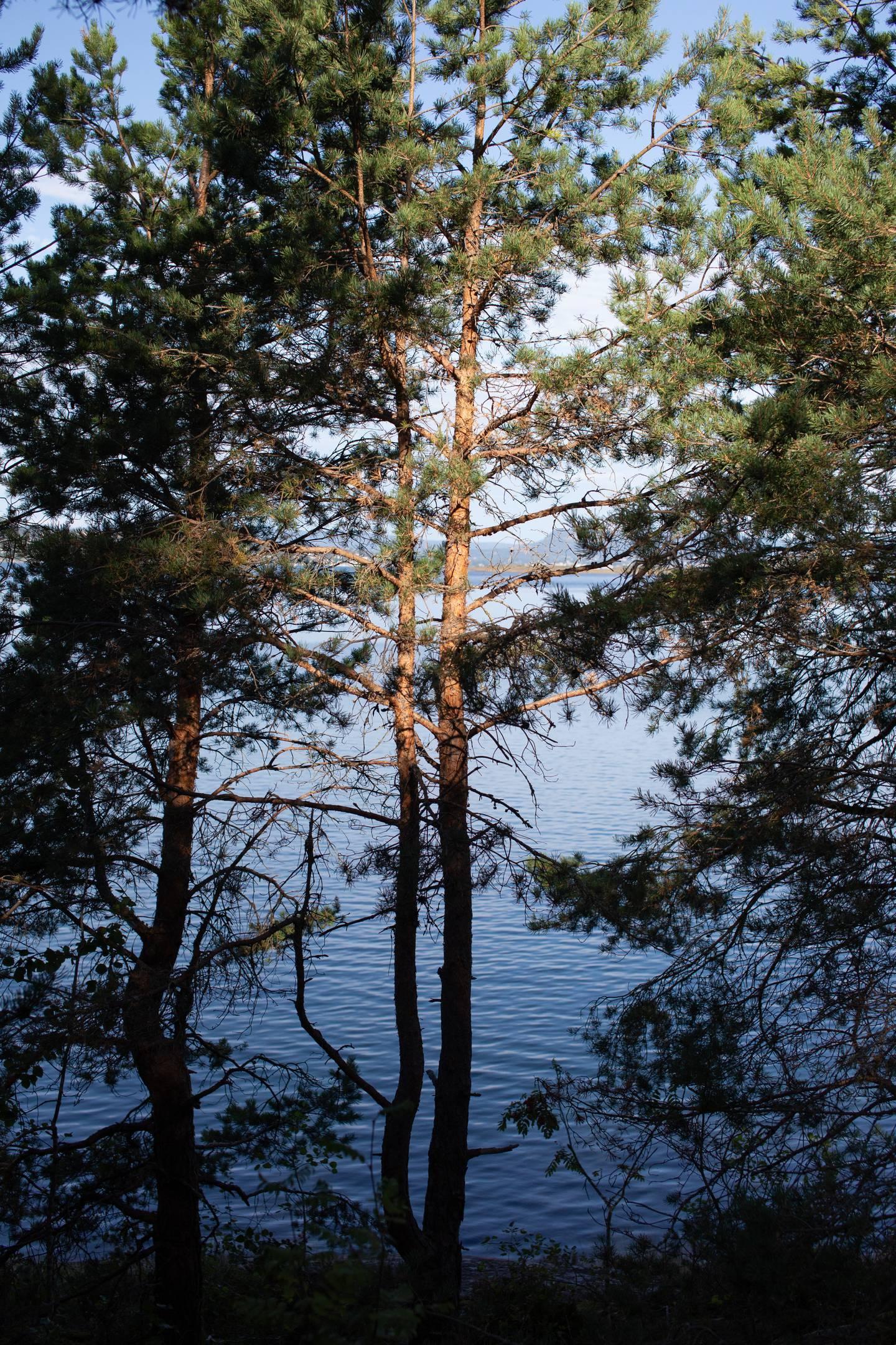 Dag Hareide på Hvervenbukta (Oslo, 18.08.21).  Sak om naturmangfold og valgkamp.