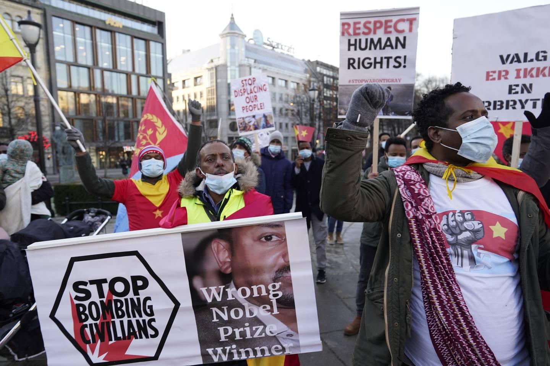 Statsminister Abiy Ahmed har høstet massiv internasjonal kritikk for sin krigføring i Etiopias Tigray-region. Her fra en demonstrasjon i Oslo i november. Foto: Heiko Junge / NTB