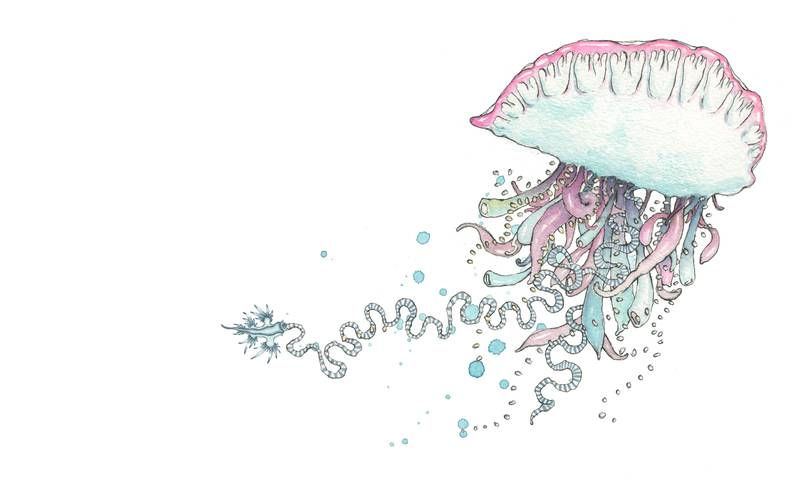 verden under vann